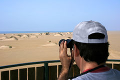 Man birdwatching. Middle aged man observing wildlife through binoculars Royalty Free Stock Photo