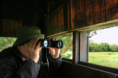 Man birdwatching. Man looking through binoculars in a birdwatching hideout Royalty Free Stock Photos