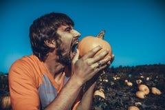 Man biting pumpkin Royalty Free Stock Images