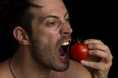 Man biting a tomato royalty free stock image