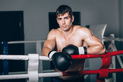 Man in black boxing gloves on the ropes of the ring is worth. Recreation. Portrait strong-willed person. Royalty Free Stock Photos