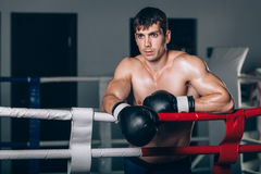 Man in black boxing gloves on the ropes of the ring is worth. Recreation. Portrait strong-willed person. Royalty Free Stock Photo