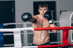 Man in black boxing gloves on the ropes of the ring is worth. Recreation. Portrait strong-willed person. Stock Photo