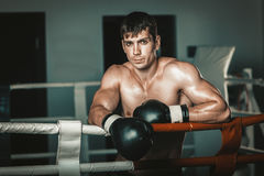 Man in black boxing gloves on the ropes of the ring is worth. Recreation. Portrait strong-willed person. Royalty Free Stock Photography