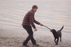 Man and black dog on the beach. Young caucasian male walking with dog on the morning beach, sunset on the sea or ocean and man with black labrador puppy Royalty Free Stock Photography