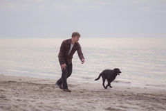 Man and black dog on the beach. Young caucasian male walking with dog on the morning beach, sunset on the sea or ocean and man with black labrador puppy Royalty Free Stock Image