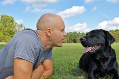 Man with black dog. In the park at sunny day Stock Images