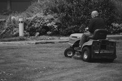 Man in Black Polo Shirt Riding Riding Mower Stock Photography