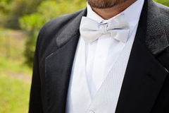 Man In Black Tux Stock Photography