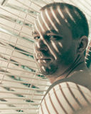 Man at the blinds looking back Stock Images