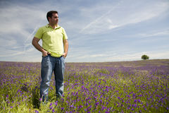 Man at the blooming meadow Royalty Free Stock Photography