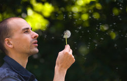 Man blowing dandelion Royalty Free Stock Photos