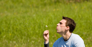 Man blowing flower Stock Image