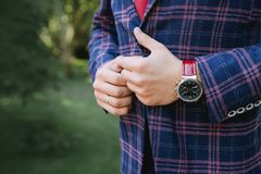 A man in a blue checkered tweed jacket. With a red tie and fashionable chasmin hand. Closeup with blue checkered elegant suit Stock Photos