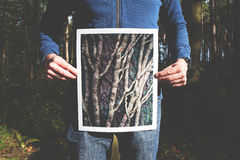 Man in Blue Hoodie Holding Brown Tree Photo Stock Photo