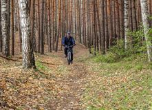 A man in a blue jacket and a blue pants and a blue hat is riding a bike in an autumn forest Stock Image