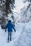 Man in blue jacket walking true snow covert forest. On lake Fusine in Italy Stock Images