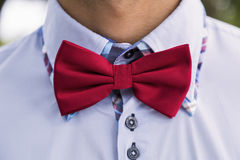 Man in blue shirt and red bow-tie. Royalty Free Stock Photography