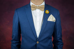Man in blue suit bowtie, brooch, handkerchief Royalty Free Stock Image
