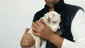 Man in in a blue vest holds a puppy in his arms. stock footage