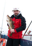 Man on boat with cod fish. Man on fishing boat with a cod fish Stock Image