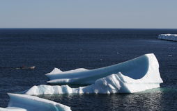 Man in Boat near Icebergs Royalty Free Stock Photo