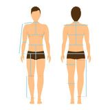 Man Body Front and Back for Measurement. Vector. Man Body Front and Back for Measurement. Flat Design Style. Vector illustration Stock Photo