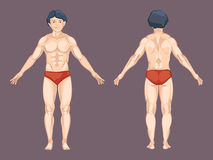 Man body in front and back pose. Vector Stock Photos