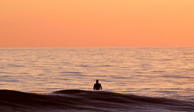 Man in Body of Water during Sunset Stock Image