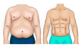 Man body before and after weight loss. Comparison of fat and slim man belly Royalty Free Stock Photos