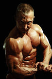 Man bodybuilder Royalty Free Stock Images