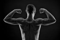 Man bodybuilder flex arm muscles. Athlete with fit torso, back view. Sportsman show biceps and triceps. Workout and training activ. Ity in gym. Power and Stock Photos