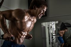 Man bodybuilder in gym Royalty Free Stock Images