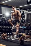Man bodybuilder in gym Royalty Free Stock Image