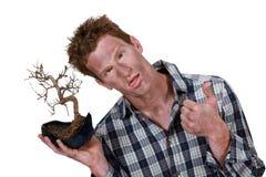 Man with bonsai. Man with a burnt bonsai tree Royalty Free Stock Photo