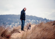 Man with Boston Terrier stock image