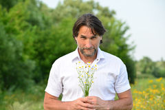 Man with a bouquet of daisies on the meadow Stock Image