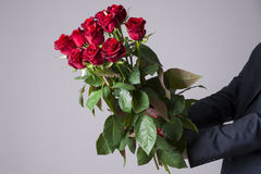 Man with bouquet of red roses on a gray background. Present at the International Women's Day Stock Image