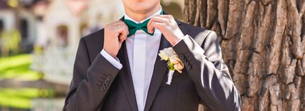 Man in a bow tie Royalty Free Stock Image
