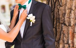 Man in a bow tie Stock Photography