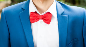 Man with bowtie. Young man in suit and with red bowtie royalty free stock photography