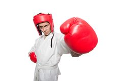 Man boxer isolated on the white Royalty Free Stock Photos