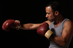 Man boxing. A male boxer wearing gloves Royalty Free Stock Image