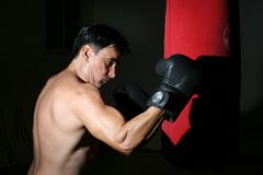Man boxing. Boxer with his dukes up Royalty Free Stock Images