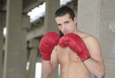 Man boxing Stock Photography