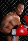 Man Boxing. Portrait of an African American man standing in front of a wire fence wearing red boxing gloves Royalty Free Stock Photography