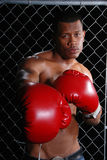 Man Boxing. Portrait of an African American man standing in front of a wire fence wearing red boxing gloves Stock Image