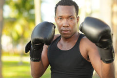 Man with boxing gloves Stock Photo