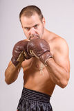 Man in boxing gloves Stock Photos