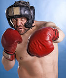 Man with boxing gloves Stock Image
